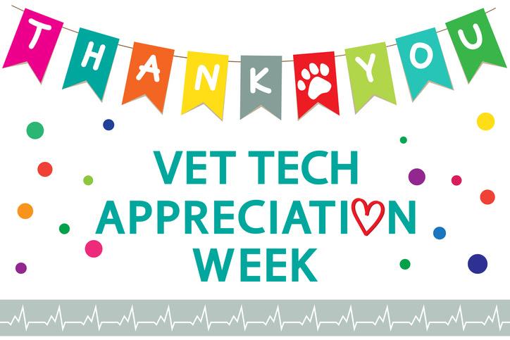 Vet Tech Appreciation